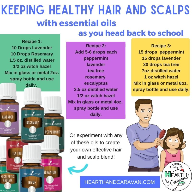 Back to School With Essential Oils--Healthy Hair and Scalps