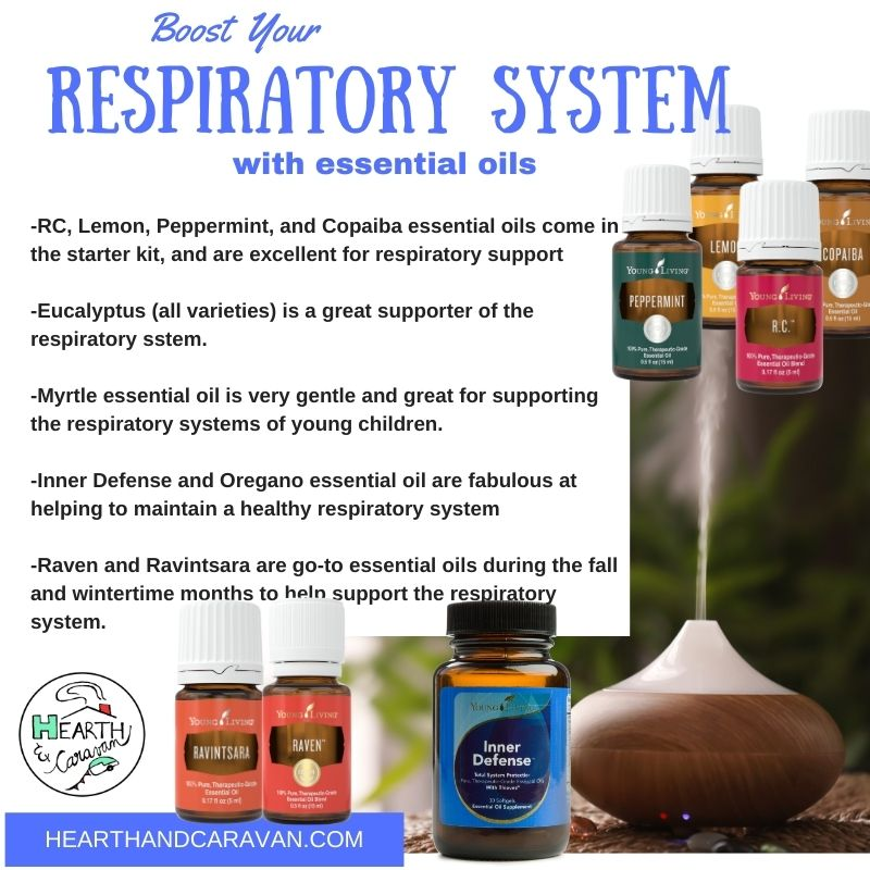 Back to School With Essential Oils--Boost the Respiratory System